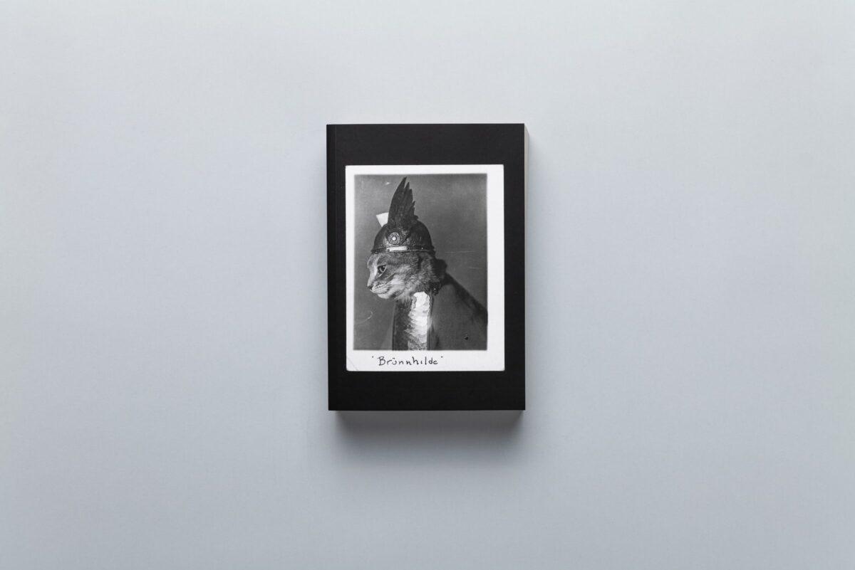 Okładka albumu SHIFTERS Marty Bogdańskiej
