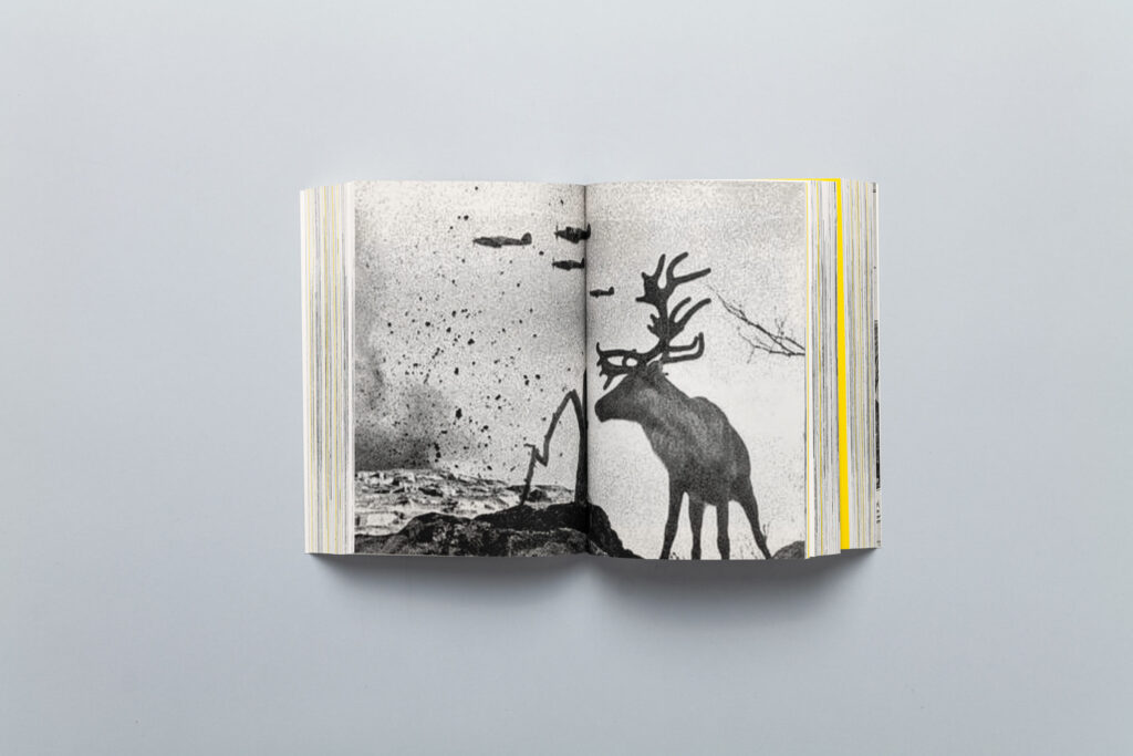 Spread from SHIFTERS by Marta Bogdańska